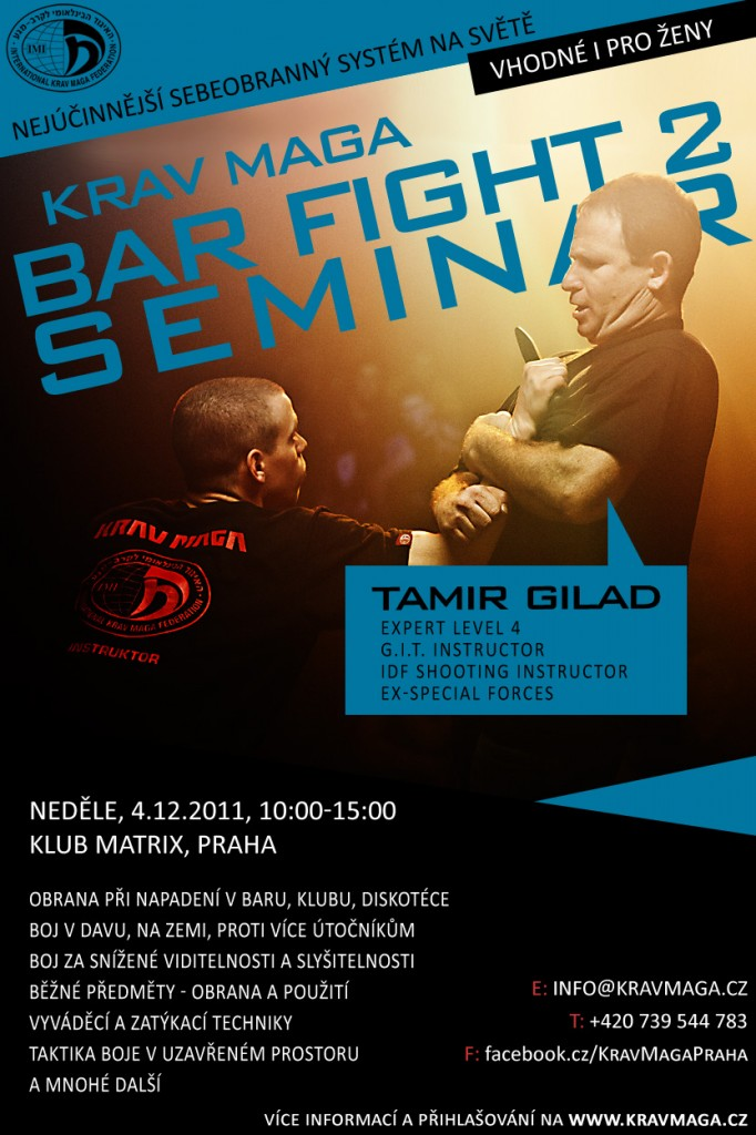 Krav Maga Bar Fight 2 Seminar