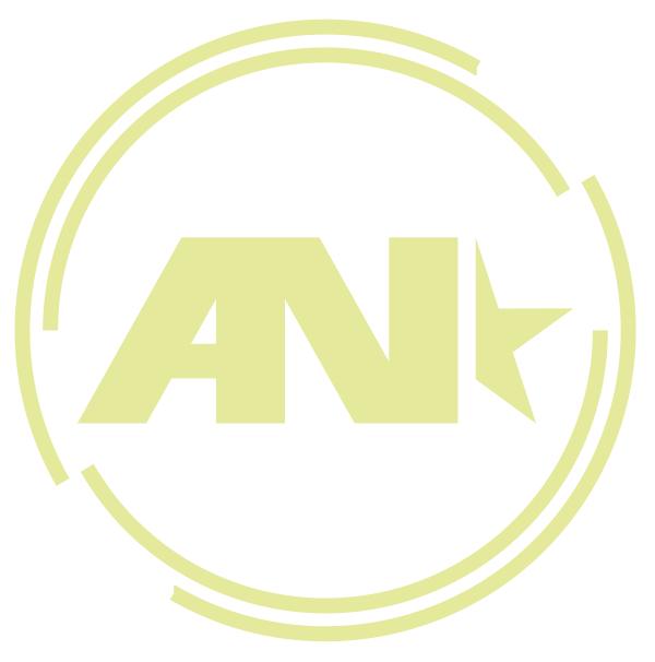 anoviny logo